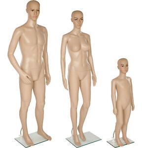 Full Body Mannequin Shop Window Display Dummy Tailor's Tummy Dressmaker new