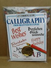 Kid Kits: Calligraphy Kid Kit : From Beginner to Expert by Caroline Young... EC