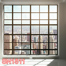 Indoor Window 10x10  FT CP SCENIC PHOTO BACKGROUND BACKDROP SN1811