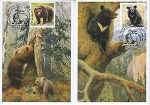 Russia 2020 Fauna 02 European brown bear Asian black bear