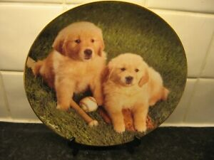 GOLDEN RETRIEVER DOG   PLATE  - DOUBLE PLAY  -  FRANKLIN   MINT