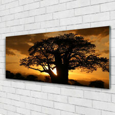 Print on Glass Wall art 125x50 Picture Image Tree Nature