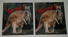 What is a Marsupial 2 Pbk Book Lot Duplicates Teacher Classroom Kangaroo Science