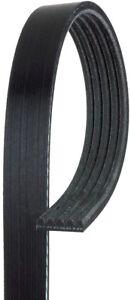 Serpentine Belt-Standard ACDelco Pro 5K340