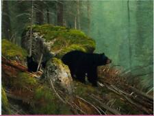 Home Decor Art Print on Canvas Yellowstone Bears12x16