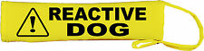 Caution Reactive Dog Lead Slip Cover I deal for dogs that need space nervous 789