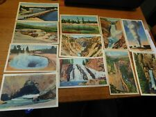 11 Yellowstone and Grand Canyon Postcards-New-by Haynes Studios-Vintage