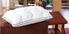 1*Ultra Soft White Feather Velvet Pillow Core Comfortable Hotel Top-Grade Pillow