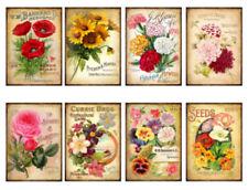 Vintage Image Victorian Grunge Tag Flower Seed Catalogs Waterslide Decals FL465