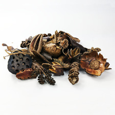 Aquarium Botanicals Package Natural Decorations Tannins good for Betta & Shrimp