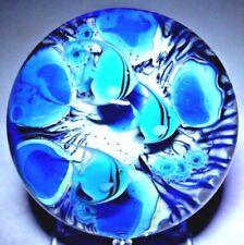 MAGNIFICENT Magnum DANIEL SALAZAR Blue TROPICAL Angel FISH Glass PAPERWEIGHT