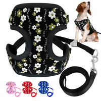 Cute Flower Decoration Mesh Padded Pet Dog Harness and Leash Set Breathable Soft