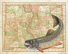 Brook Trout Unlimited Fly Fishing Club Colorado State Map Art Print Flies MAP40