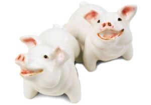 Pig Gift, Cruet Set Handmade by Blue Witch