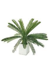 Artificial Plants - Cycad 105cm
