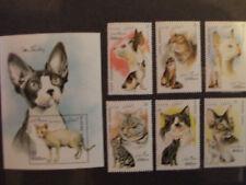 Briefmarken Katzen Afghanistan 1996 Bl.91+1701-06,postfrisch