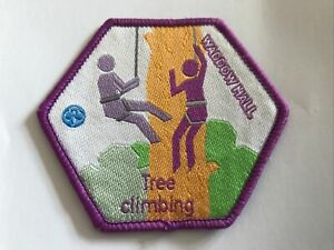 Girlguiding Waddow Hall Tree Climbing Activity Badge