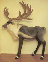 Life Size Steiff Studio Reindeer EAN 524165 Large Detachable Antlers Christmas