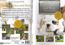Dvd: Moods Of Nature Puppies, Kittens And More