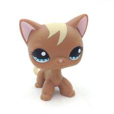 LPS 1170 Brown Shorthair Cat Littlest Pet Shop Blue Eyes Kitty Curl Hair Gift