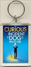 The Curious Incident Of The Dog In The Night Time. The Play. Keyring / Bag Tag.