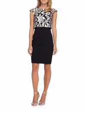 Petite Petite Lace Popover Sheath Dress Size 6P #G36 MSRP $148.00