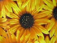 YELLOW SUNFLOWER LARGE DAISY GARDEN COUNTRY FASHION SEW CRAFT DECOR FABRIC BTHY#