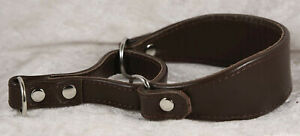 Unbranded leather martingale collar in brown 10 inches around worn once