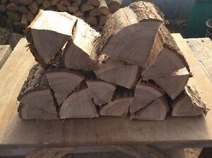 Oak split logs, Decorative logs, slices,display, hardwood