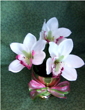 Flower pens-Cymbidium Orchids White