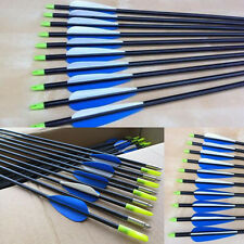 "10pcs 31"" Heavy Duty fiberglass Arrows Compound & Recurve Bow 15-80LB Archery BO"