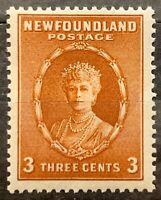 Newfoundland.  3 Cent Definitive Brown.  SG211. 1932. LH. #AJ329