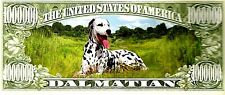 Dalmatian Novelty Bank Note Dog Puppy Put in Christmas Birthday Card Ideal Gift