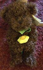 """Russ Edible Arrangements Bear Named Daisy 12"""""""