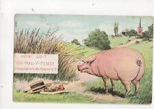 Honi Soit Qui Mal Y Pense 1906 Comic Pig Postcard 232b