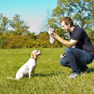 Plush Dog Toys Wiggles Vibrates Barks Boredom & Stimulating Play Color Varies