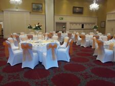 Organza chair sashes & Satin Chair sashes
