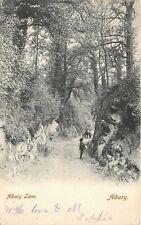 POSTCARD   SURREY  ALBURY  ALBURY   LANE    Circa  1905