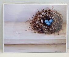 Robins Nest with Eggs and Feather FINE ART GICLEE PRINT Lara Harris Bird 8 x10