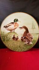 """DANBURY MINT 12 Waterbird Plates """"Mallard """" Plate 9 1/2""""d"""
