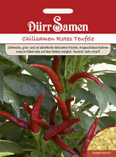 Chilisamen Rotes Teufele Saatgut von Dürr-Samen