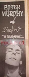"""PETER MURPHY (Bauhaus) Blue Heart 1986 UK Poster size Press ADVERT 16x6"""""""