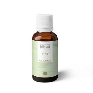 Pine Pure Essential Oil- Pure & Therapeutic Grade- 10ml
