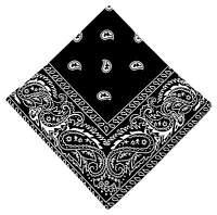 Ornament Paisley Bandana Print Silk Neck