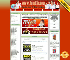 Business Shopping Website For Sale Amazon Store Adsense Domain