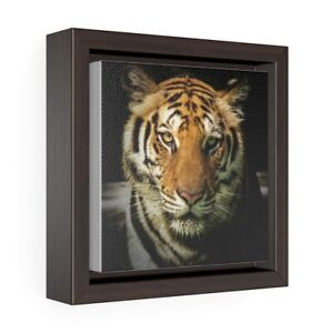 Square Framed Premium Gallery Wrap Canvas 100% cotton recycled plastic frame