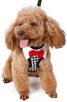Pet Dog Cat Smart Bow Tie Tuxedo Harness + Lead Wedding Fancy Dress Costume Set
