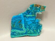 Chrysocolla Malachite 2.25 inch Polished Endcut Rock Stone Arizona #4