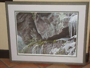"Robert Bateman ""At The Cliff"" Bobcat Limited Edition Signed Framed Print"