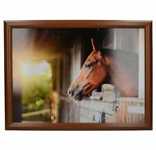 STABLE BROWN HORSE Beanbag Lap Tray PADDED Cushion Creative Tops